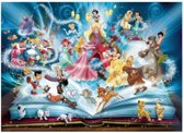 Disney's figuren boek | Full Diamond Painting 30x40cm.