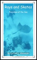 Rays and Skates: Pancakes of the Sea