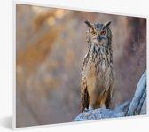 Foto in lijst - Een Bengaalse oehoe zit op een rots fotolijst wit 60x40 cm - Poster in lijst (Wanddecoratie woonkamer / slaapkamer)