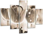 Glasschilderij Tulp | Grijs | 100x70cm 5Luik | Foto print op Glas |  F005119