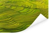 Een indrukwekkende luchtfoto van de rijstvelden in Vietnam Poster 30x20 cm - klein - Foto print op Poster (wanddecoratie woonkamer / slaapkamer)