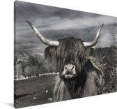 Schattige Schotse hooglander zwart wit Canvas 90x60 cm - Foto print op Canvas schilderij (Wanddecoratie woonkamer / slaapkamer) / Wilde dieren Canvas Schilderijen