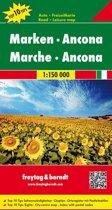 FB Marche • Ancona