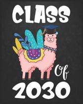 Class Of 2030: Llama First Day Of School Notebook - Grow With Me Graduation Journal - First Day Of Kindergarten Gift Notebook