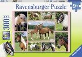 Ravensburger puzzel Paardenhemel XXL 300 stukjes