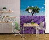 Lavendel Provence  - Fotobehang 183 x 254 cm