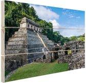 Piramide van Palenque Mexico  Hout 80x60 cm - Foto print op Hout (Wanddecoratie)