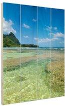 Kauai Oceanie  Hout 120x160 cm - Foto print op Hout (Wanddecoratie) XXL / Groot formaat! / Zee en Strand