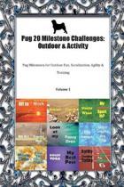Pug 20 Milestone Challenges