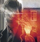 Lightbulb Sun (HQ) (LP)