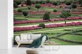 Fotobehang vinyl - De tuin van het Kasteel van Chenonceau breedte 360 cm x hoogte 240 cm - Foto print op behang (in 7 formaten beschikbaar)