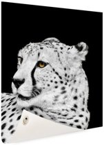 Luipaard zwart-wit  Tuinposter 80x120 cm - Tuindoek / Buitencanvas / Schilderijen voor buiten (tuin decoratie)