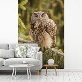 Fotobehang vinyl - Een oehoe op een tak van een naaldboom breedte 160 cm x hoogte 240 cm - Foto print op behang (in 7 formaten beschikbaar)