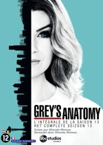 Grey's Anatomy - Seizoen 13