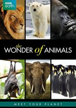 BBC Earth - Wonder Of Animals