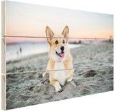 Hond op het strand Hout 80x60 cm - Foto print op Hout (Wanddecoratie)