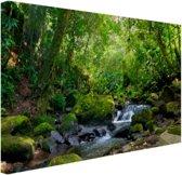 Regenwoudkreek Canvas 80x60 cm - Foto print op Canvas schilderij (Wanddecoratie woonkamer / slaapkamer)