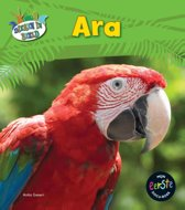 Dieren in beeld - Ara