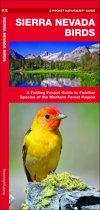 Sierra Nevada Birds
