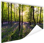 Paarse bloemen in het bos Poster 60x40 cm - Foto print op Poster (wanddecoratie woonkamer / slaapkamer)
