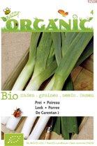 Buzzy® Organic Herfstprei Carentan (BIO)