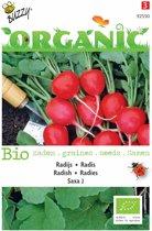 3 stuks Organic Radijs Saxa 2 (Skal 14725)