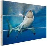 Grote witte haai Hout 80x60 cm - Foto print op Hout (Wanddecoratie)