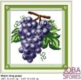 """Borduur Pakket """"JobaStores®"""" Fruit 03 11CT voorbedrukt (27x28cm)"""
