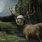 Moonbuilding 2703 Ad Remixes / Sin In Space Pt 1