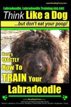 Labradoodle, Labradoodle Training AAA AKC