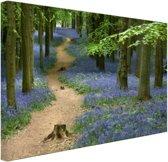Bospaadje met blauwe bloemen Canvas 60x40 cm - Foto print op Canvas schilderij (Wanddecoratie)