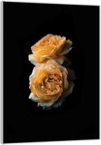 Plexiglas –Gele Bloemen Zwarte Achtergrond– 60x90cm Foto op (Wanddecoratie op Plexiglas)