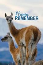 Llama Remember