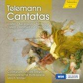 Collegium Vocale Siegen/Hannoversch - Cantatas