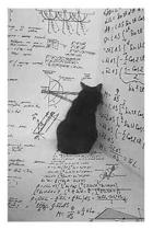Schr dinger's Cat