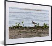 Foto in lijst - Poelruiter aan het water fotolijst zwart met witte passe-partout klein 40x30 cm - Poster in lijst (Wanddecoratie woonkamer / slaapkamer)