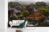 Fotobehang vinyl - Lavarots op de schildvulkaan Piton de la Fournaise in het Afrikaanse Réunion breedte 540 cm x hoogte 360 cm - Foto print op behang (in 7 formaten beschikbaar)