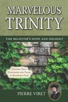 Marvelous Trinity, the Believer's Hope and Delight