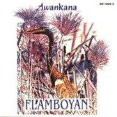Flamboyan: River Of The Stars