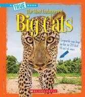 Big Cats (a True Book
