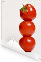 Een stapel van tomaten tegen een witte achtergrond Tuinposter 80x120 cm - Tuindoek / Buitencanvas / Schilderijen voor buiten (tuin decoratie)