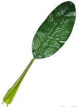 Bananenblad 74 cm