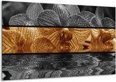 Glasschilderij Orchidee | Sepia, Bruin | 120x70cm 1Luik | Foto print op Glas |  F001996