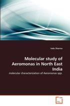 Molecular Study of Aeromonas in North East India