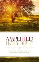 AMPLIFIED HOLY BIBLE CAPTURES THE FULL
