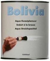 Bolivia Aqua Kwastplamuur 1L