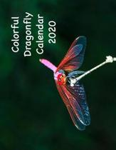 Colorful Dragonfly Calendar 2020