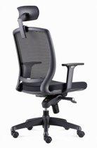 Ergonomische bureaustoel met hoofdsteun. Model BenS 820DH