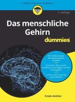 Das menschliche Gehirn fur Dummies