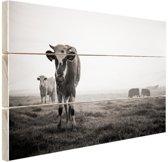 Zwart-wit koeien Hout 60x40 cm - Foto print op Hout (Wanddecoratie)